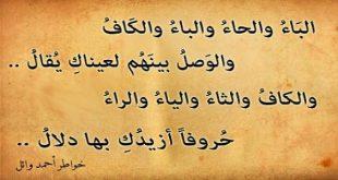 صورة اجمل ابيات الشعر , اروع قصيدة في الشعر