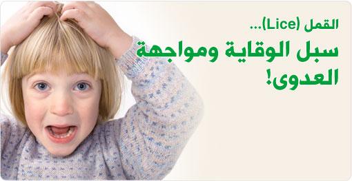 بالصور علاج القمل , وصفه فعالة لعلاج القمل وبيضه 4757