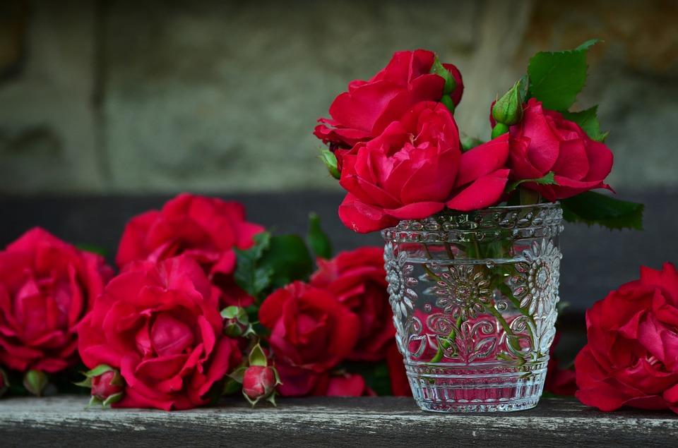 بالصور صور ورد صور ورد , احلي صور الورد الجميل 6667 7