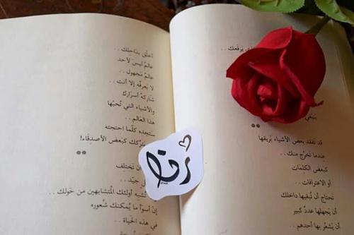 بالصور صور اسم رنا , اجمل بوستات باسم رنا 6668 3