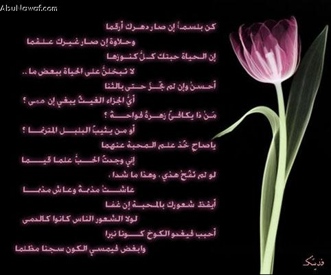 بالصور اجمل ابيات الشعر , اروع قصيدة في الشعر 6672 5