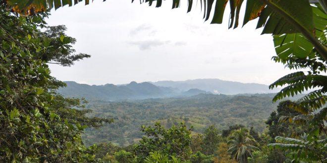 بالصور صور طبيعية , مناظر طبيعية جامدة JamaicaMountains 660x330