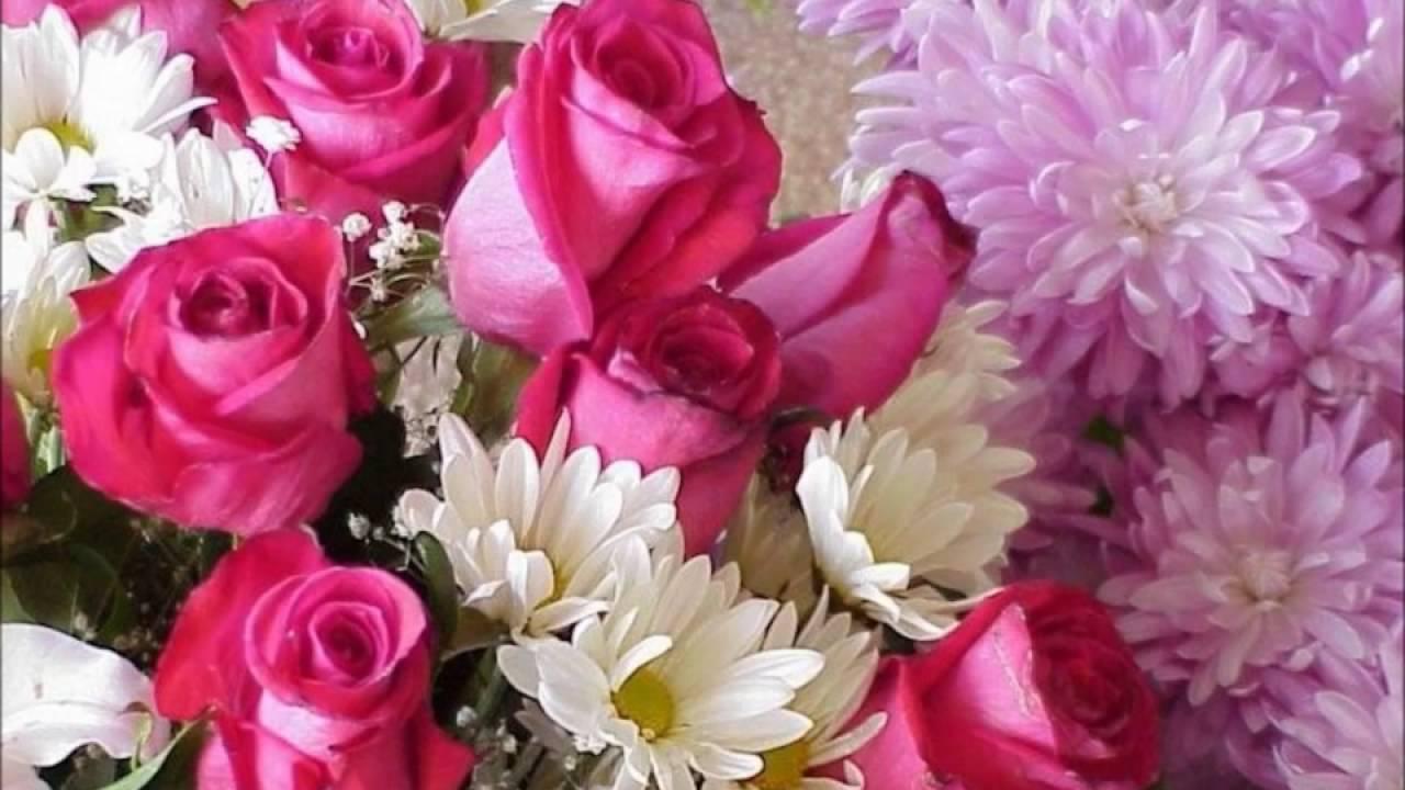 بالصور احلى صور ورد , صور اجمل الورود 3232 4