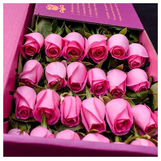بالصور باقات ورود , اجمل الصور لباقات الورود 3305 3