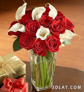بالصور باقات ورود , اجمل الصور لباقات الورود 3305 4