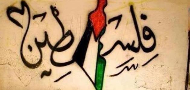 بالصور شعر عن فلسطين , اجمل الاشعار عم فلسطين الحبيبه 3317 3
