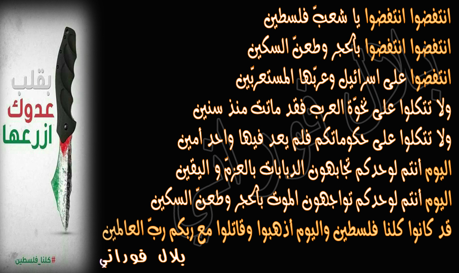 بالصور شعر عن فلسطين , اجمل الاشعار عم فلسطين الحبيبه 3317 7