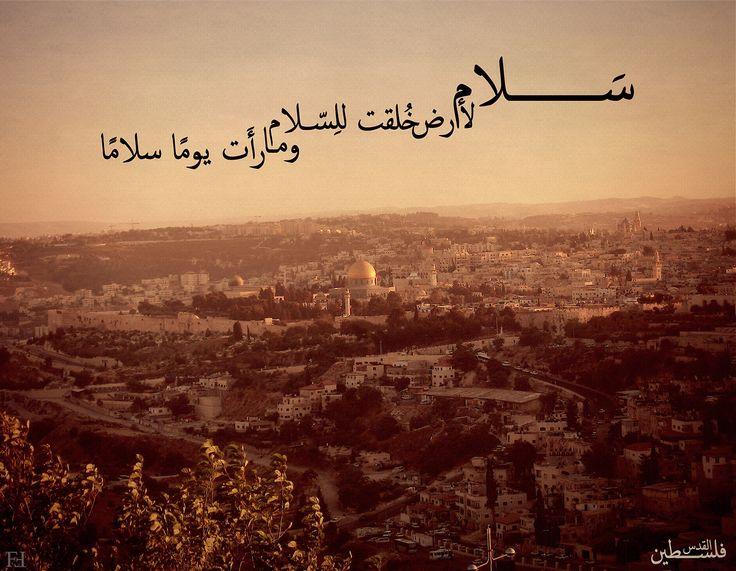 بالصور شعر عن فلسطين , اجمل الاشعار عم فلسطين الحبيبه 3317 9