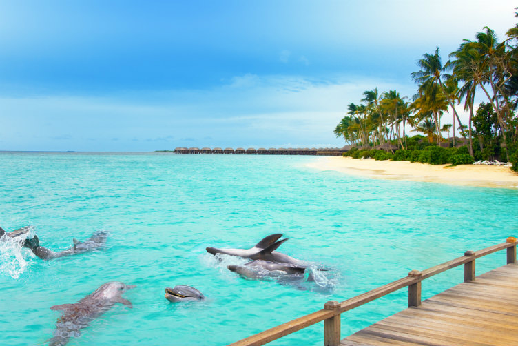بالصور صور جزر المالديف , اجمل الصور لجزر المالديف روعة 3360 2