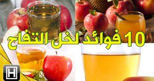 فوائد خل التفاح , فوائد خل التفاح للشعر ولتخسيس