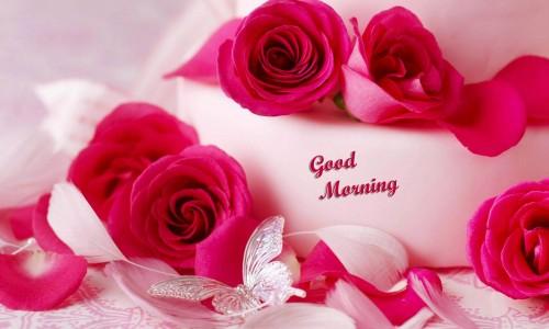صورة صباح الخير رومانسية , اجمل الصور الرومنسية المكتوب عليها صباح الخير 3591 2