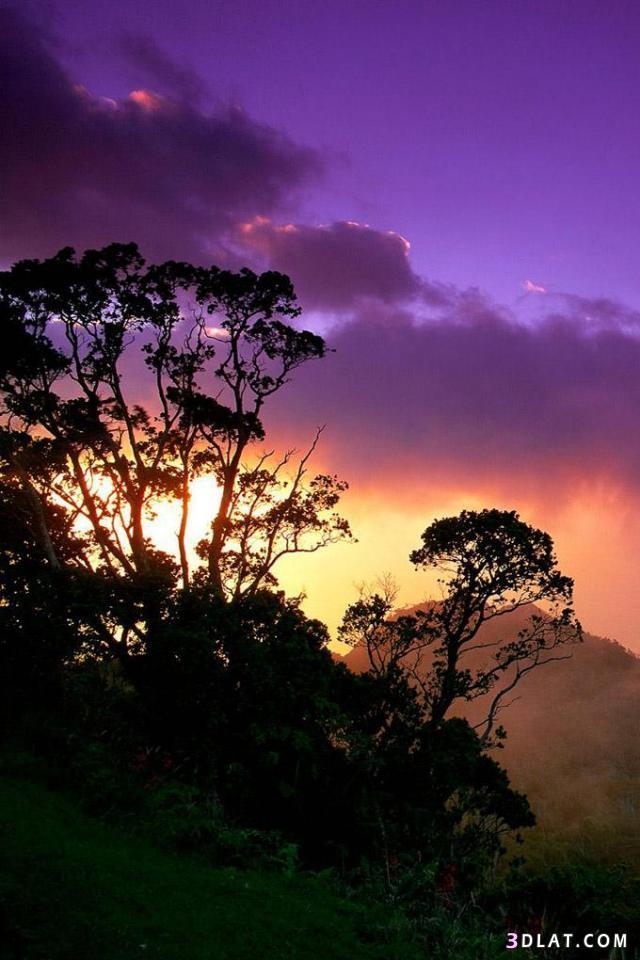 صورة خلفيات طبيعة , اجمل خلفية طبيعية روعة 3679 8
