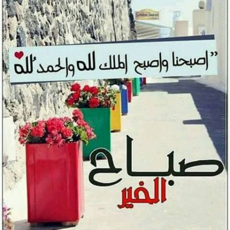 بالصور رمزيات صباحيه , صور حلوة للصباح 3778 1
