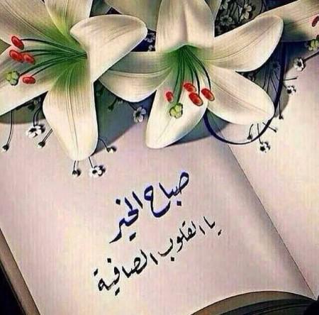 بالصور رمزيات صباحيه , صور حلوة للصباح 3778 2