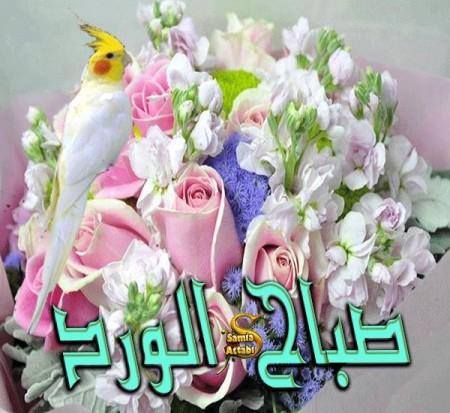 بالصور رمزيات صباحيه , صور حلوة للصباح 3778 5