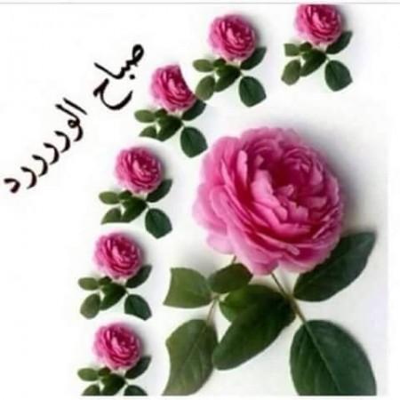 بالصور رمزيات صباحيه , صور حلوة للصباح 3778 6