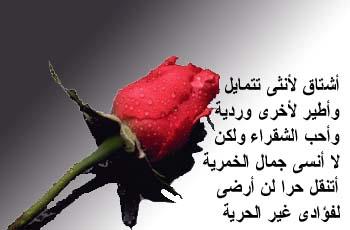 بالصور احلى شعر حب , ابيات شعر علي صور