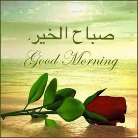 بالصور اجمل رسائل الصباح , احلي مسجات صباحية 3871 1