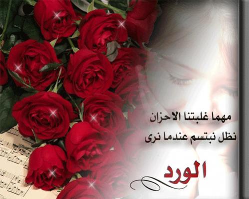 خواطر عن الورد صور اروع كلمات عن الورود حبيبي
