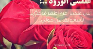 بالصور خواطر عن الورد , صور اروع كلمات عن الورود 1052 12 310x165
