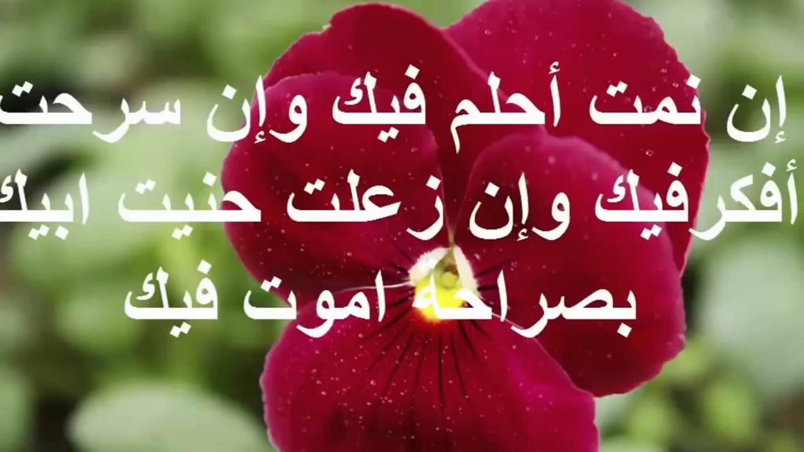 بالصور رسائل حب مصرية , اروع سالة حب بالمصرية 1097 10