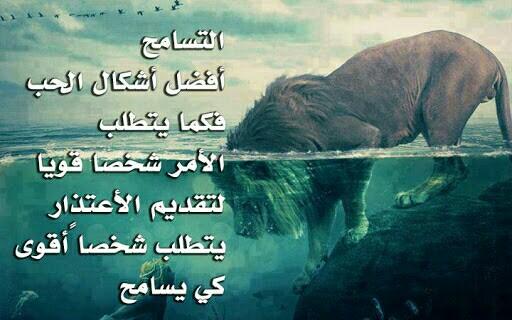 بالصور ابيات شعر قصيره حكم , شعر قصير حكم ومواعظ 1247 10