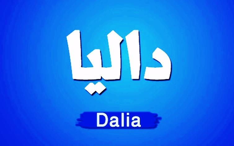 بالصور معنى اسم داليا , اسم داليا وما يحمله من معاني 1592 1