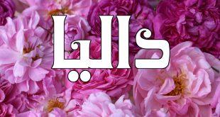 معنى اسم داليا , اسم داليا وما يحمله من معاني