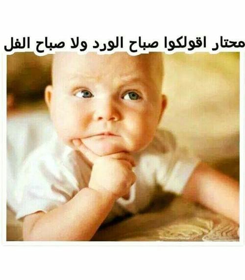 صورة صباح الخير مضحكة , اجمل صورة كومديه مكتوب عليها صباح الخير 2276 2