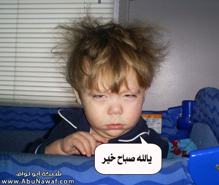 صورة صباح الخير مضحكة , اجمل صورة كومديه مكتوب عليها صباح الخير 2276 7