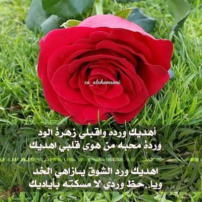 صور ورود مكتوب عليها عبارات جميله , صور اجمل الازهار مكتوب عليها كلمات رائعه