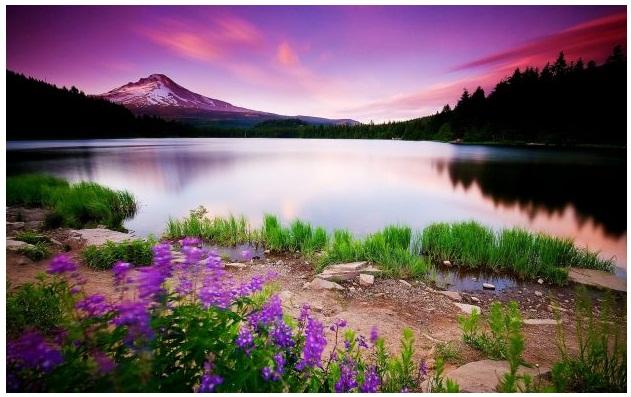 بالصور خلفيات مناظر طبيعية , اجمل صورة طبيعيه خلابة 2324 6