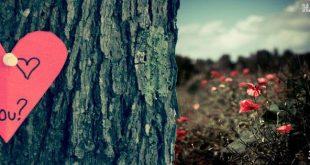 صور غلاف رومانسيه , اجمل الخلفيات المعبرة عن الحب