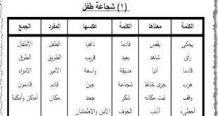 صورة معاني الكلمات العربية , ماهى المعانى للكلمات العربيه
