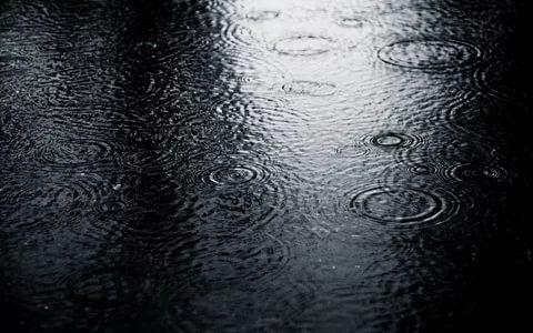 بالصور خلفيات مطر , خلية مطر جميلة ومميزة 2814 11