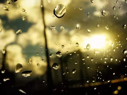 بالصور خلفيات مطر , خلية مطر جميلة ومميزة 2814 3