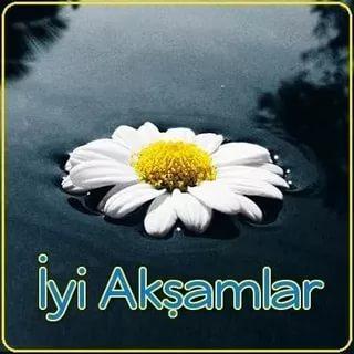 بالصور مساء الخير بالتركي , تحية المساء باللغة التركية 2825 3
