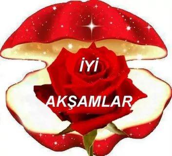 بالصور مساء الخير بالتركي , تحية المساء باللغة التركية 2825 5
