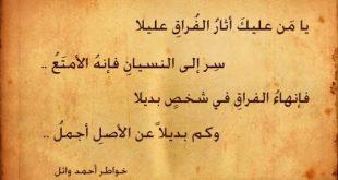 بالصور ابيات شعر حزينه , اجمل الاشعار الحزينه المؤثرة 3568 11 310x165