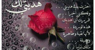 صوره مدح صديق غالي , كلمات شكر وتقدير للصديق الغالى