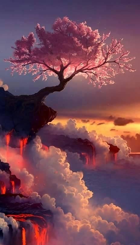 بالصور منظر جميل , اجمل صور المناظر الخلابه الطبيعيه 3703 8