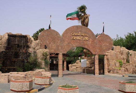بالصور الاماكن السياحية في الكويت , افضل مزار سياحى فى الكويت 3711 4