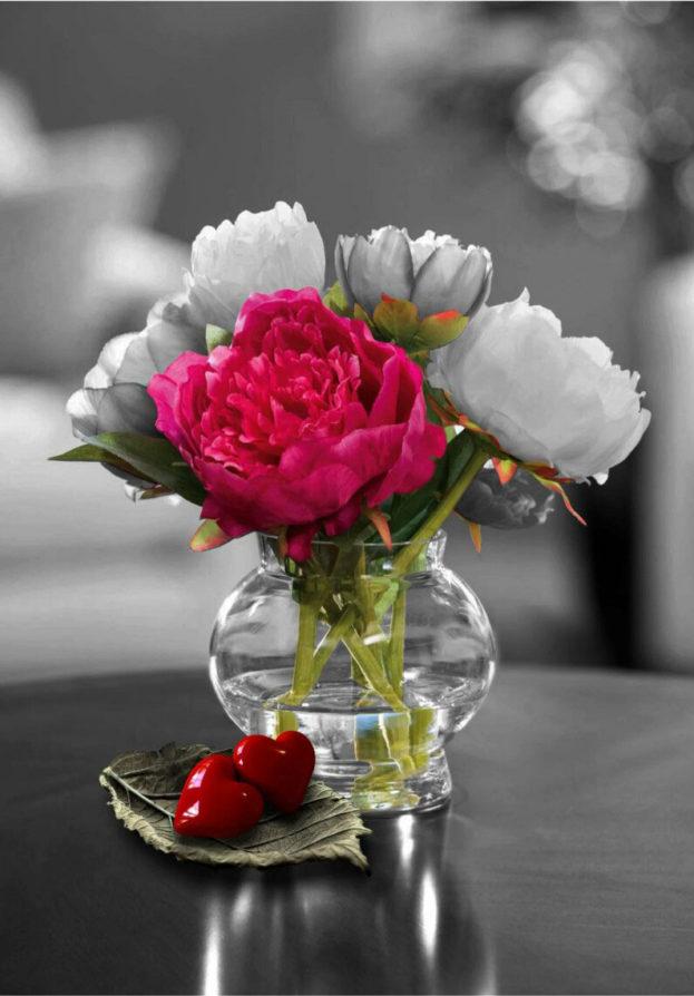 بالصور صور زهور , اجمل خلفيات الورد 3736 12