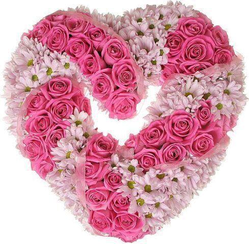 بالصور صور زهور , اجمل خلفيات الورد 3736 5