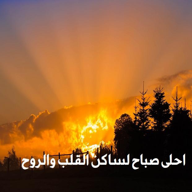 صوره اجمل ماقيل عن الصباح , اروع كلمات صباحيه تدعو للتفاؤل