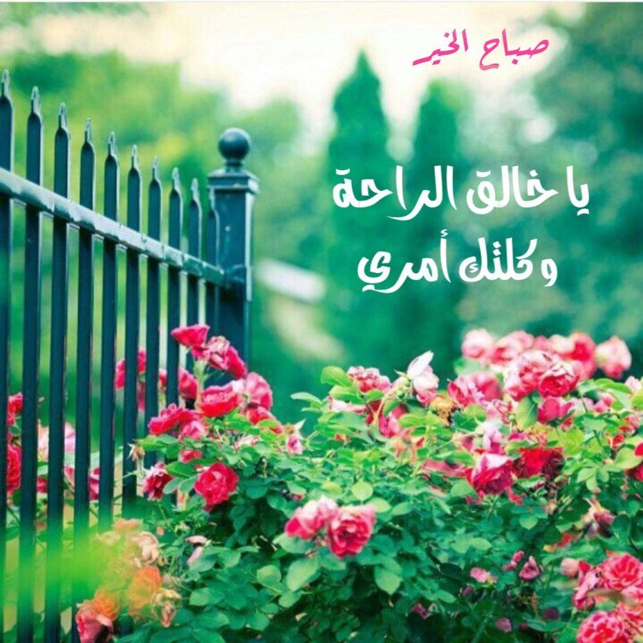 بالصور اجمل ماقيل عن الصباح , اروع كلمات صباحيه تدعو للتفاؤل 5918 6