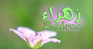 بالصور صور اسم زهراء , اشكال لاسم زهراء 1056 10 310x165