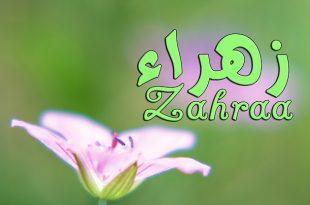 صورة صور اسم زهراء , اشكال لاسم زهراء