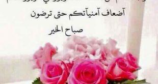 بالصور عبارات صباحية للحبيب , باجمل الكلام صبح علي حبيبك 1437 11 310x165