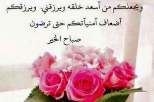 بالصور عبارات صباحية للحبيب , باجمل الكلام صبح علي حبيبك 1437 11 310x205